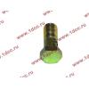 Болт пустотелый М10х1,0 (штуцер топливный) H HOWO (ХОВО) 81500070054 фото 3 Чебоксары